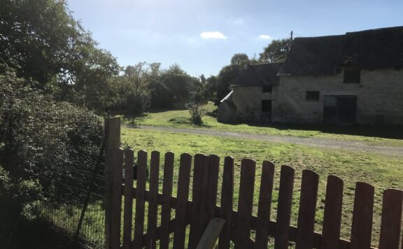 Services de garde d'animaux, pension, chenil, chatterie, toilettage, en campagne près de Dinan 22